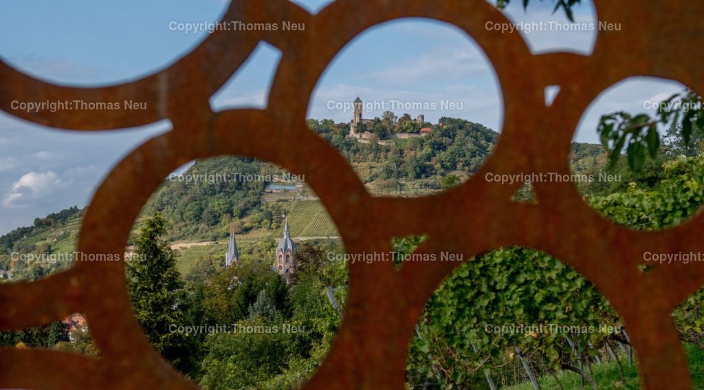 DSC_0398 | Weinblick des Jahres, Blick auf die Starkenburg vom Süden aus, ,, Bild: Thomas Neu