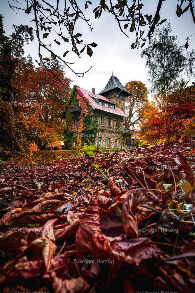 Tuckesburg im Herbst