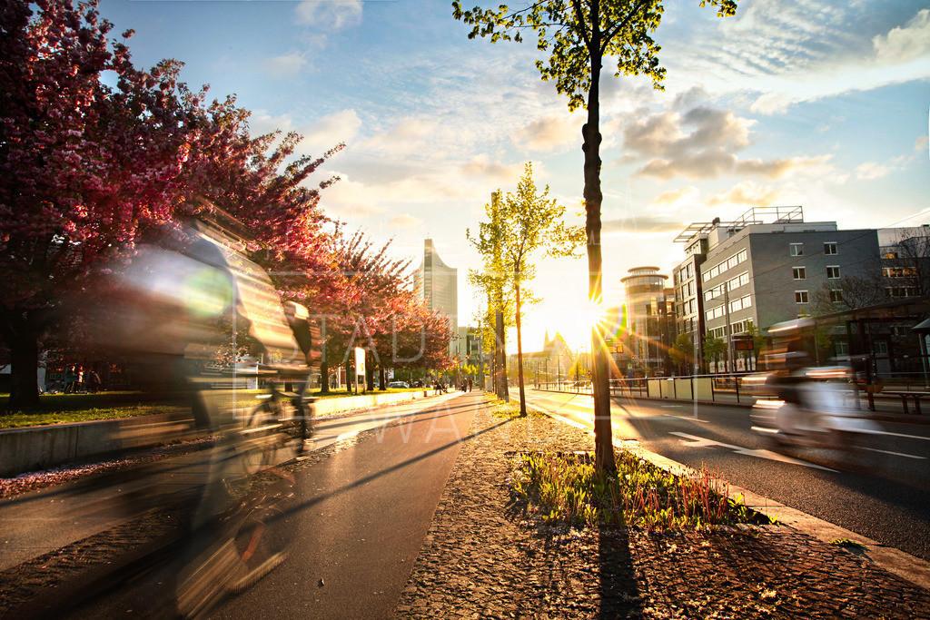 Johannisplatz Abendsonne | Ein stetiges Eilen in dieser Stadt, die doch soviel Ruhe in sich trägt.