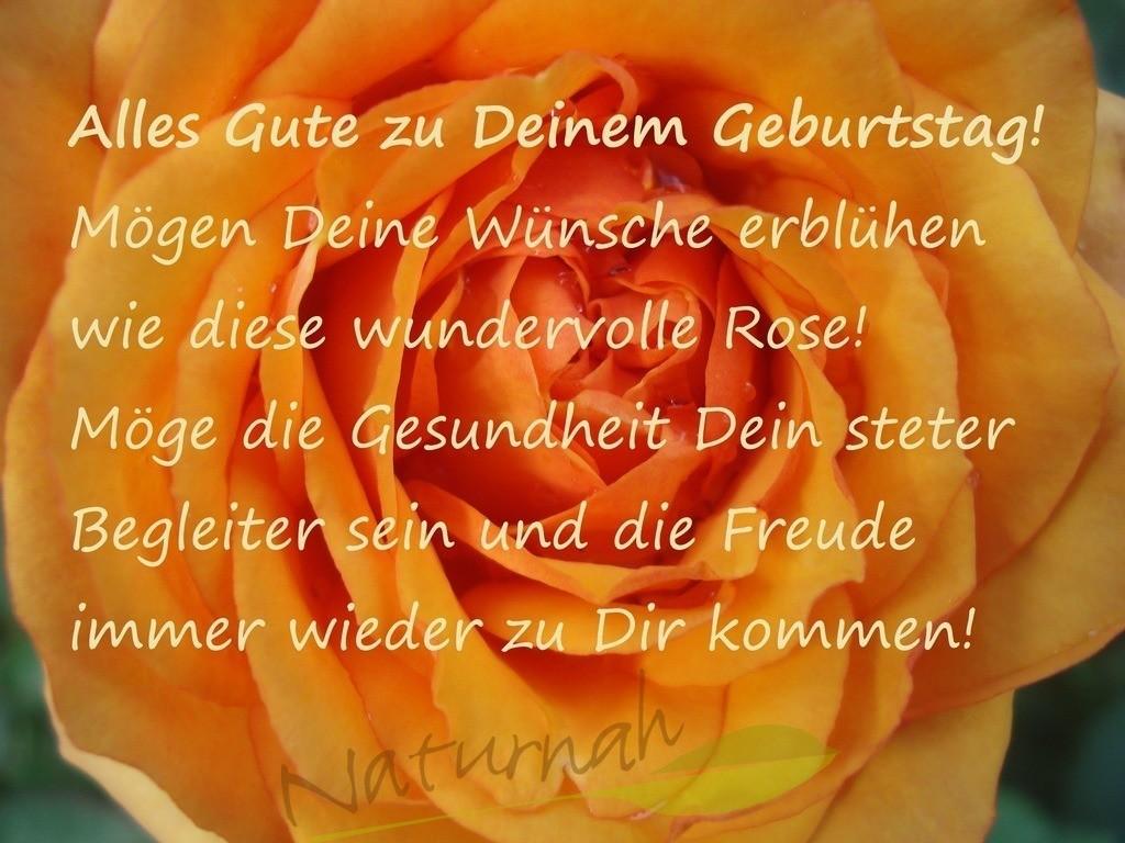 Blumige Geburtstagswünsche | Die erblühte Rosenblüte ist Symbol für das Aufblühen, das wir jemand zum Geburtstag wünschen können.