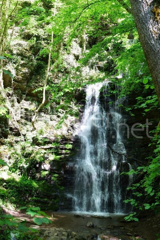 Wasserfall im Wald | Wasserfall bei Kliding, Bad Bertrich in der Eifel