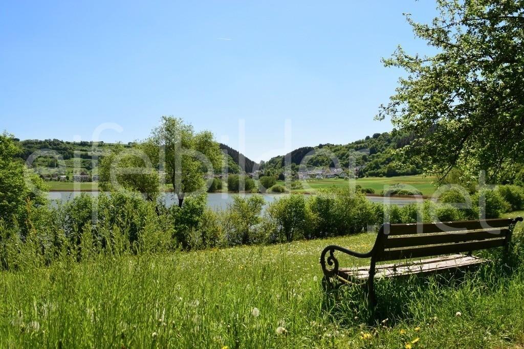Landschaft am Meerfelder Maar | Ein idyllisches Plätzchen in Meerfeld, Eifel (Vulkaneifel)