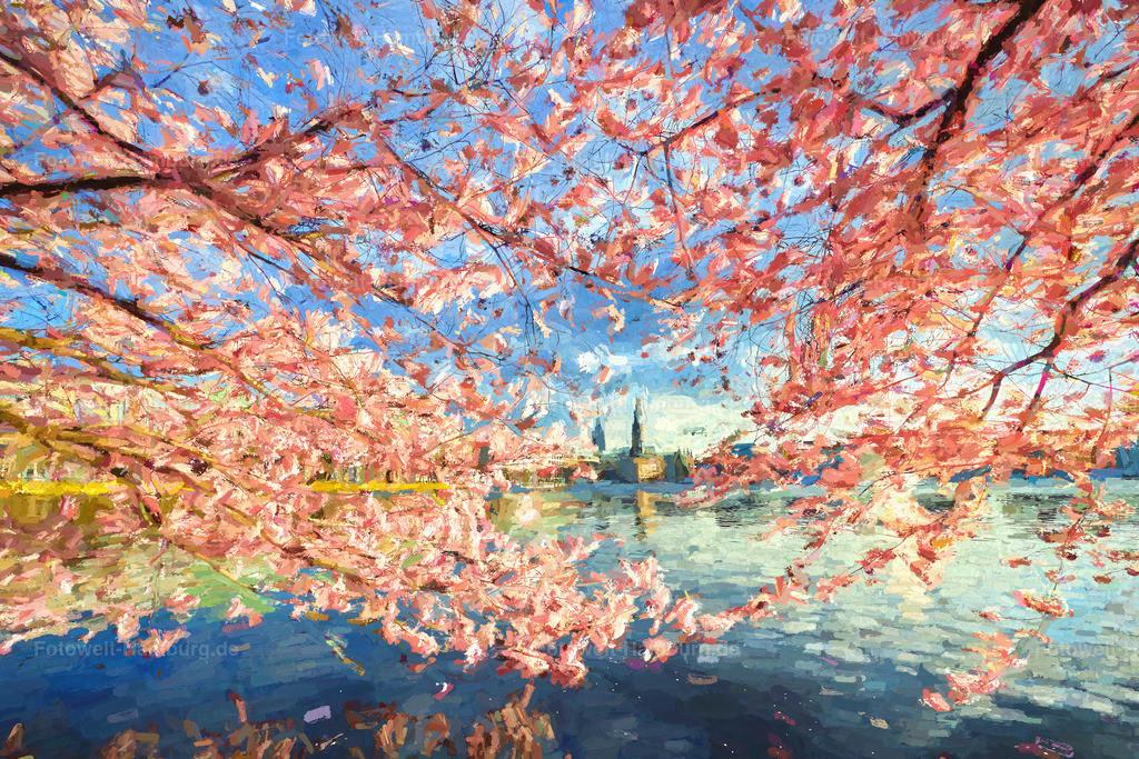 10210412 - Kirschblütentraum | Wunderschönes impressionistisches digitales Gemälde der Kirschblüte an der Binnenalster.
