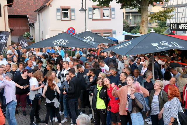 Bachgassenfest_Publikum