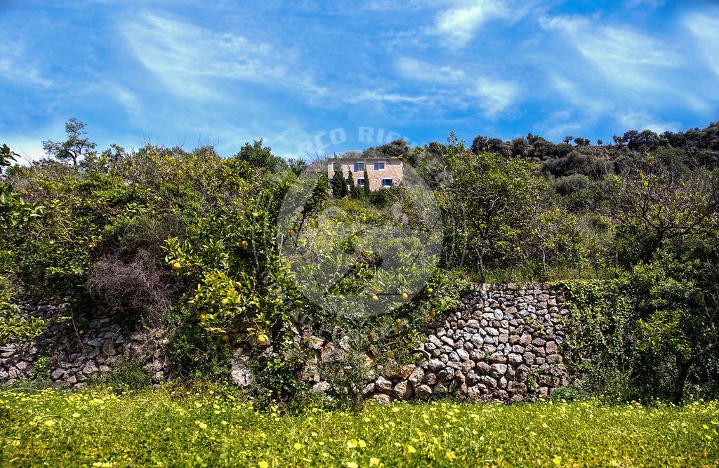 Impressionsfotografie   Bildmaterial:  Deià ist eine Kleinstadt mit Verwaltungssitz nahe der Nordwestküste der Balearen-Insel Mallorca, auf einem Hügel am Rand des Tramuntanagebirges gelegen.  Preis auf Anfrage. Bedingung ist die Nennung des Copyrights: Foto Marco Richter oder www.mallorco.com  für unterlassene, unvollständig, falsch platzierte oder nicht zuordnungsfähige Urhebervermerke ist für jeden Einzelfall eine Vertragsstrafe in Höhe des fünffachen Nutzungshonorars zu zahlen, vorbehaltlich weitergehender Schadensersatzansprüche.!!!Ebenso ist der Weiterverkauf des Bildmaterials an Dritte ohne ausdrückliche Genehmigung von Marco Richter (Mallorco Photography) untersagt. Diese Regelung gilt auch bei jeglicher unberechtigt (ohne Zustimmung durch den Fotograf Marco Richter (Mallorco Photography) erfolgten Nutzung, Verwendung, Wiedergabe oder Weitergabe des Bildmaterials.