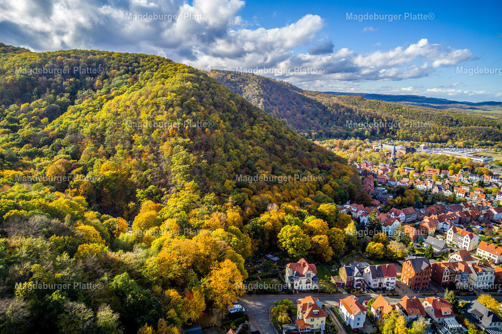 Harz im Herbst-Thale-0020