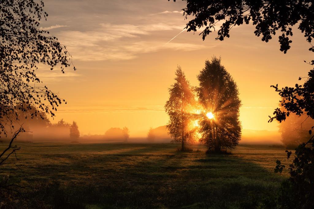 Herbst in den Hammewiesen | Herbststimmung in den Hammewiesen.