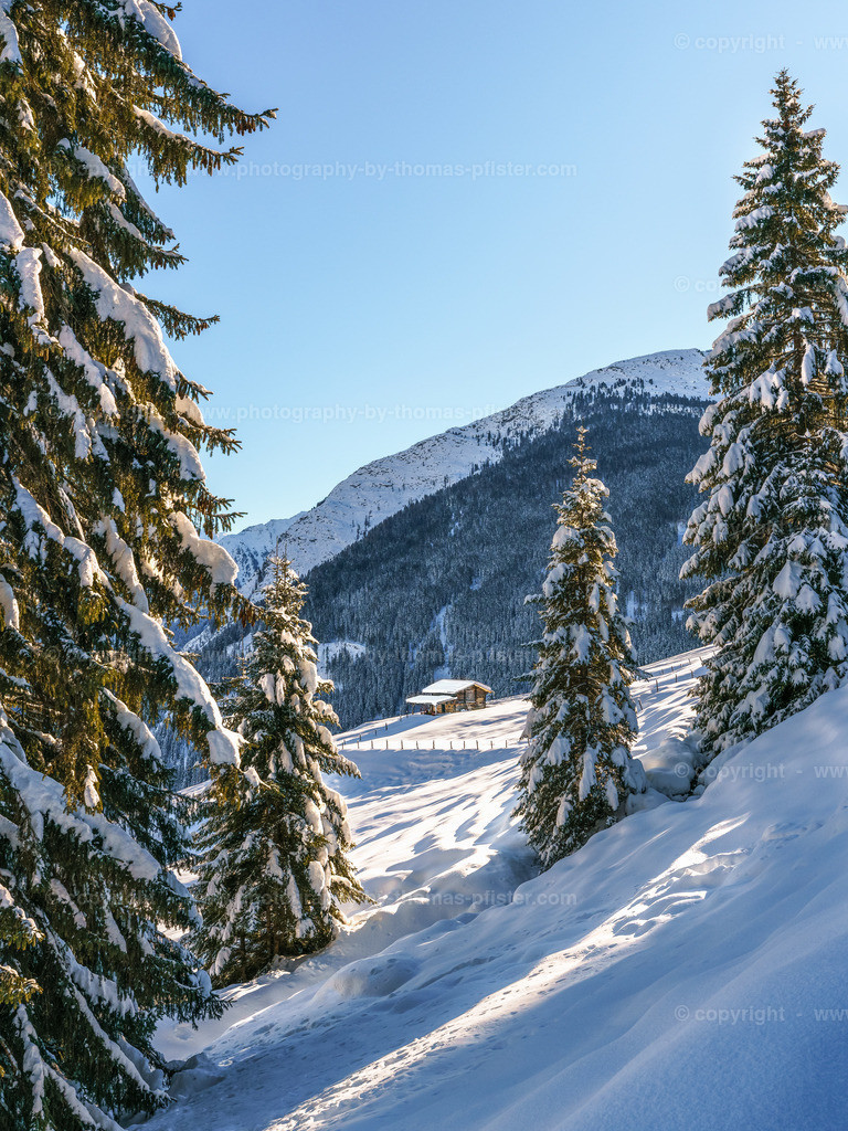 Winterwandern  Richtung Lattenalm Gemais-4