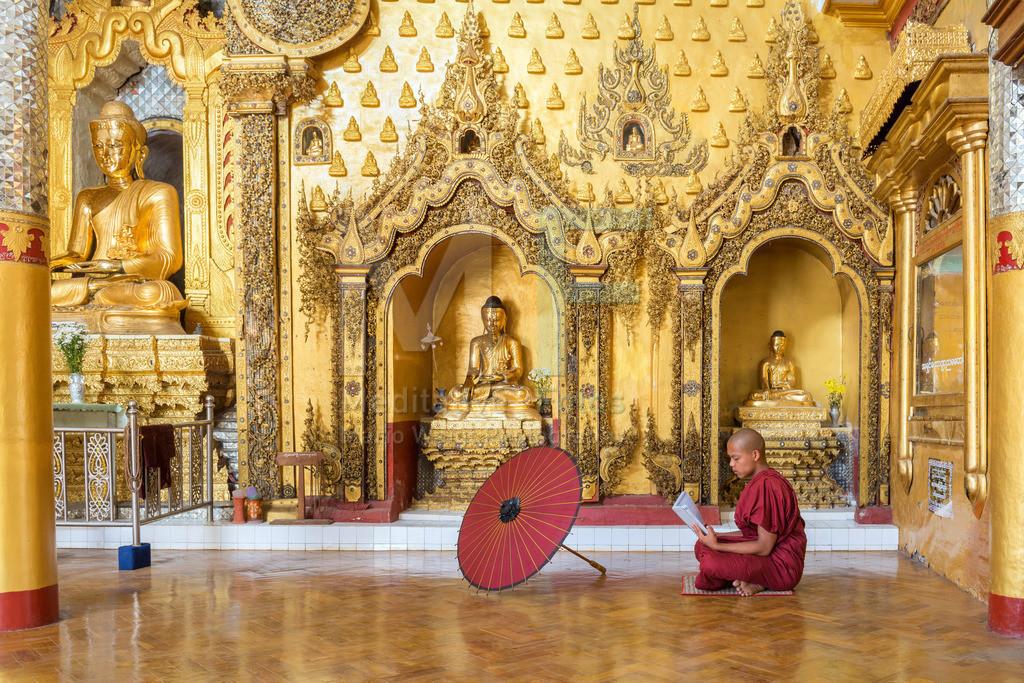 MW0119-0930 | Fotoserie DER ROTE SCHIRM | Meditierender Mönch vor goldenen Buddha-Statuen in einem buddhistischen Kloster am Inle-See in Myanmar