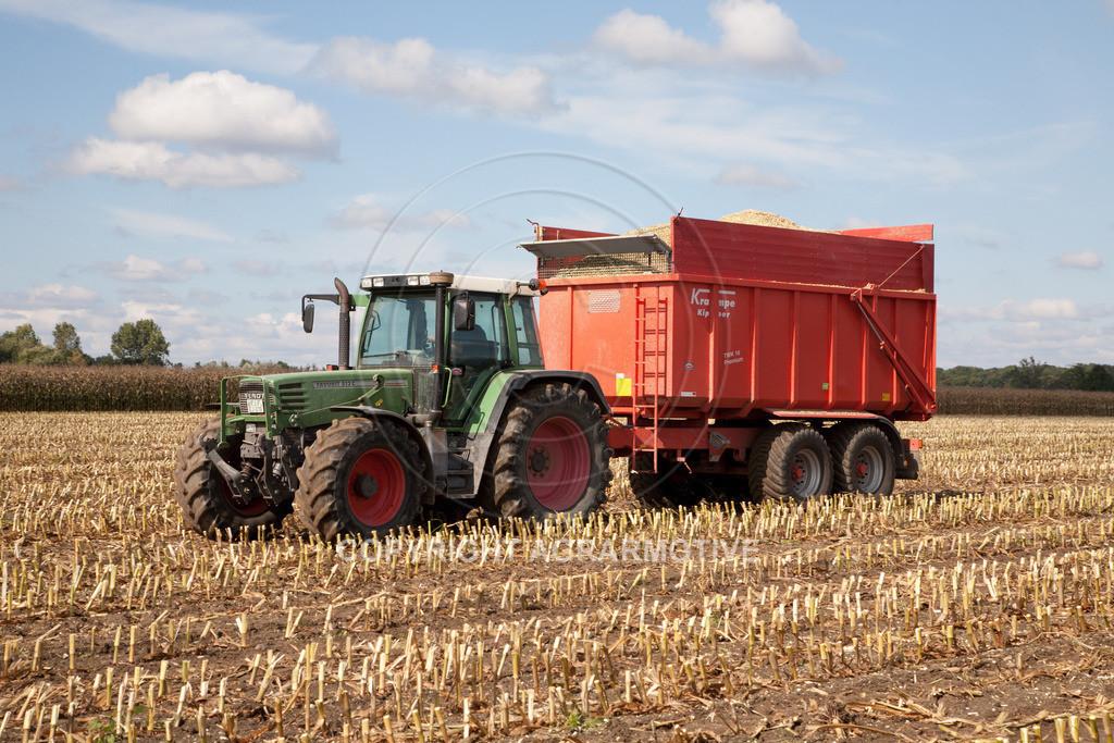 20080914-IMG_9019 | Silomais wird gehäckselt - AGRARFOTO Bilder aus der Landwirtschaft