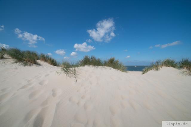 Dünen bei Renesse | Feiner Sand und blauer Himmel an den Dünen von Renesse im Sommer