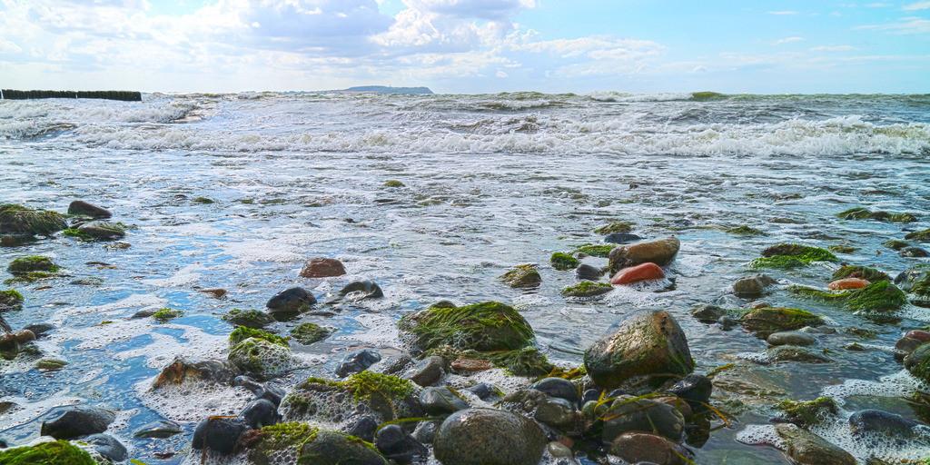 Brandung am Strand mit Steinen Panorama | Steine mit Algen überzogen in stürmischer Ostseebrandung Panorama