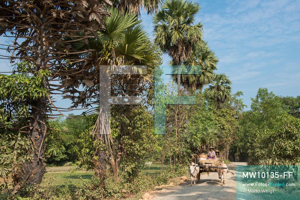 MW10135-FF   Myanmar   Hpa-an   Reportage: Zin mag Thanaka-Paste   Zin's Dorf ist von einer wunderschönen Landschaft umgeben. Bauern mit Ochsenkarren auf dem Weg ins Dorf. Die 7-jährige Nwe Zin Aye lebt im Dorf La Ka Nha nahe der Stadt Hpa-an. Sie bemalt gern ihr Gesicht mit Thanaka-Paste. Nach der burmesischen Tradtition tragen fast alle Mädchen und Frauen diese Art von Schminke.   ** Feindaten bitte anfragen bei Mario Weigt Photography, info@asia-stories.com