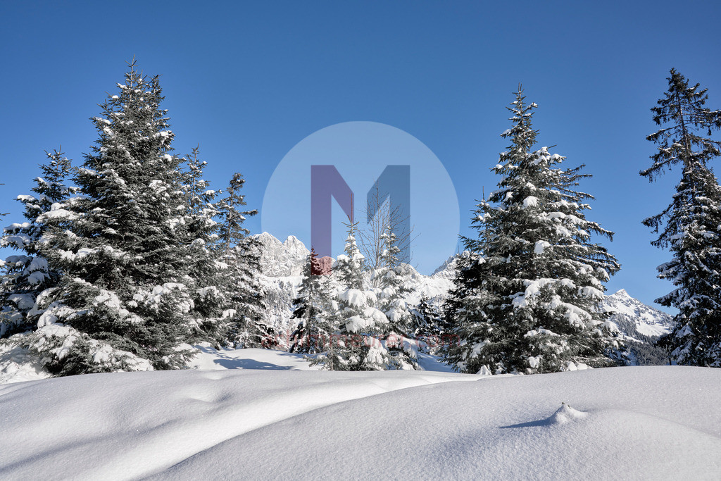 Winterlandschaft Krinnenalpe, Nesselwängle, Tannheimer Tal, Tirol, Österreich