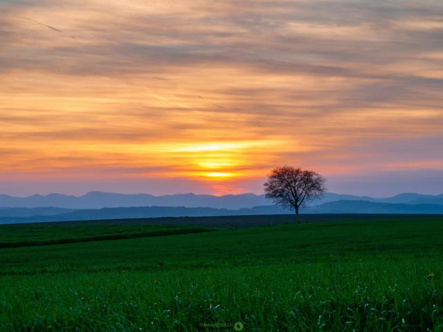 Sonnenuntergang | Sonnenuntergang im Frühling
