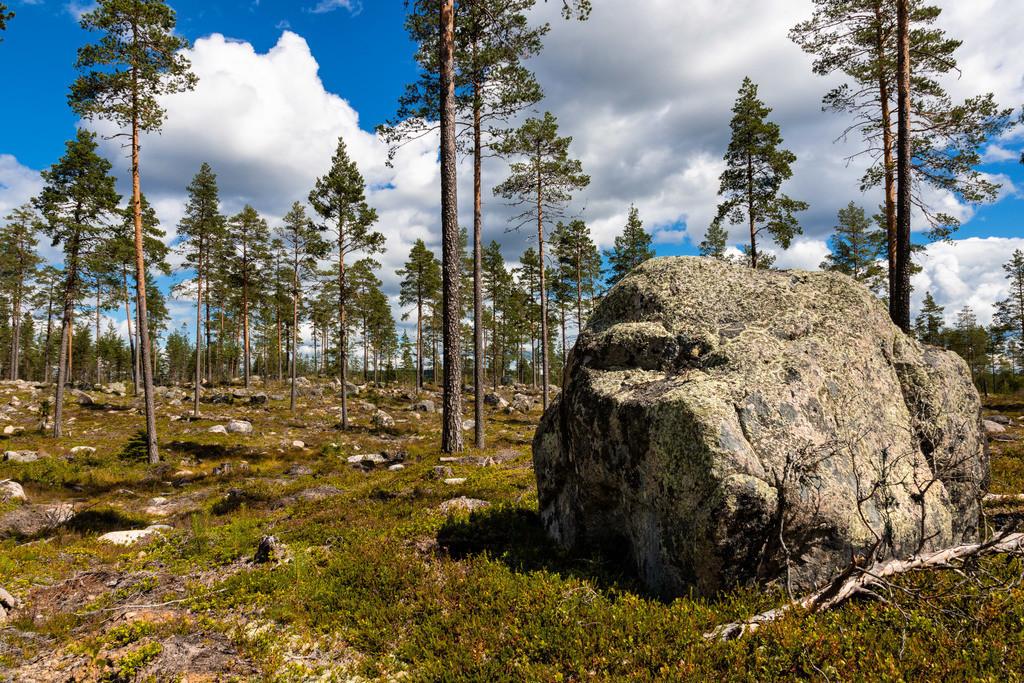 Findling in Schweden | Großer Findling in der Region Värmland.