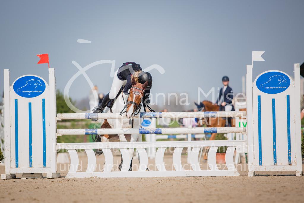 190406_Frühlingsfest_SprA-131 | Frühlingsfest der Pferde 2019, von Lützow Herford, A**-Springen, RLP 10 - 32
