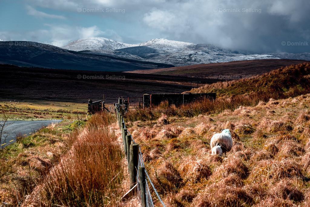 Clonakilty | Vereinigung von irischen Landschafts-Elementen