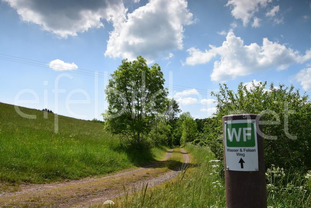 Trittscheid (Vulkaneifel) | Wanderweg bei Trittscheid (Wasser und Felsen Weg)