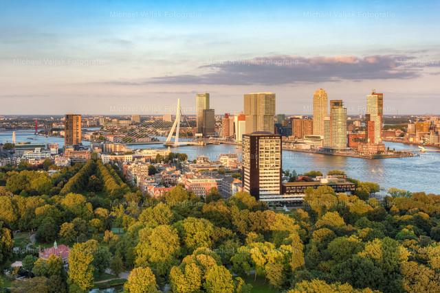 Abendsonne in Rotterdam   Die letzten Sonnenstrahlen des Tages tauchen die Bäume des Het Park und die Hochhäuser von Rotterdam in ein warmes Licht.