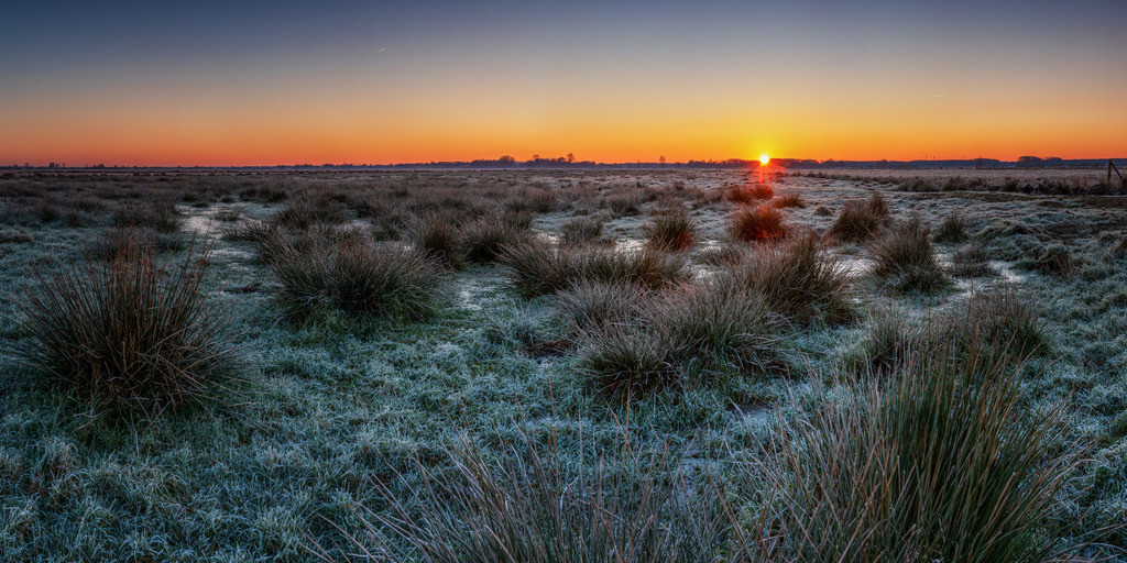 Sonnenaufgang in den Hammewiesen | Winterliche Stimmung bei Sonnenaufgang in den Hammewiesen.