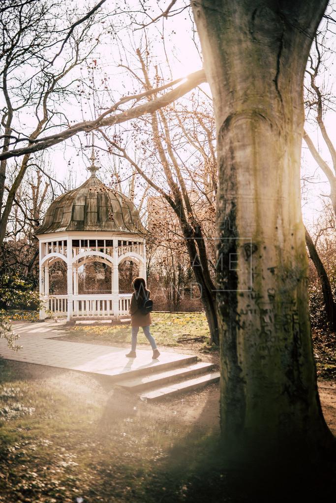Johannapark Frühling Leipzig (5)