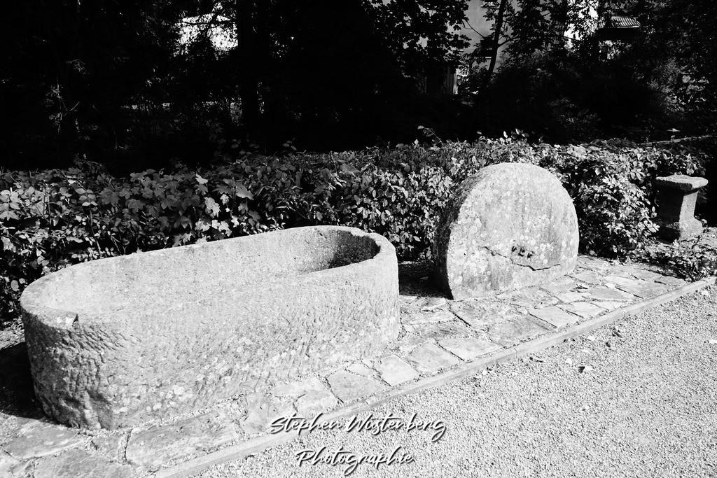 DSC04700 | Rockenhausen