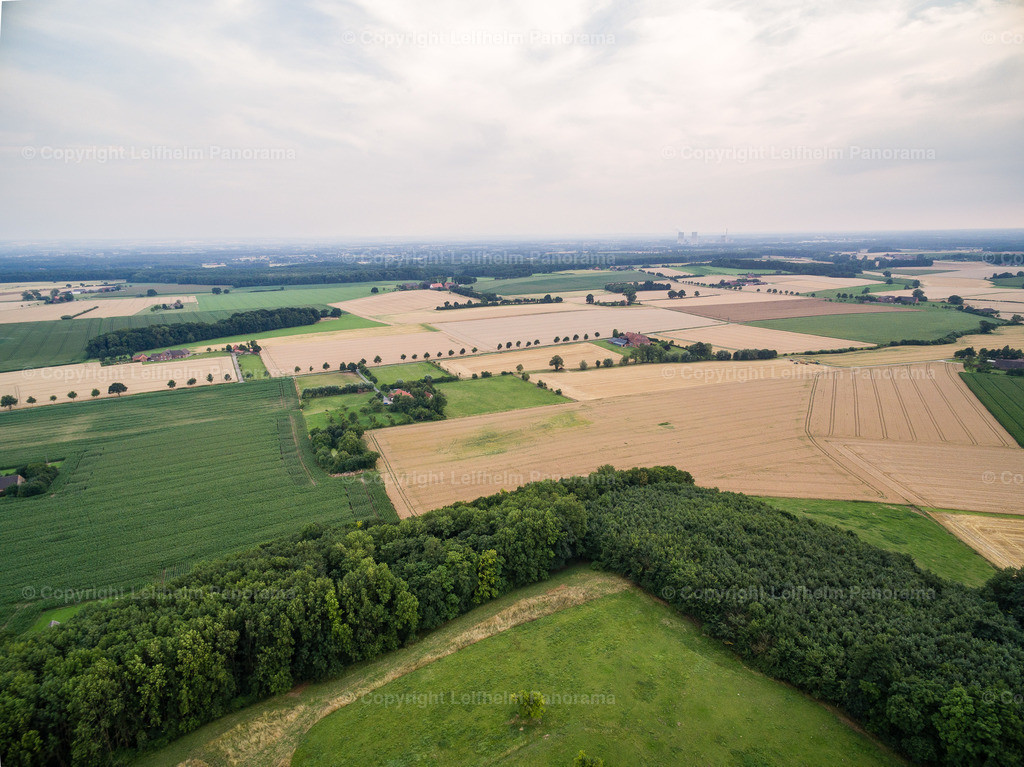 15-07-24-Leifhelm-Panorama-Windmuehle-am-Hoexberg-12