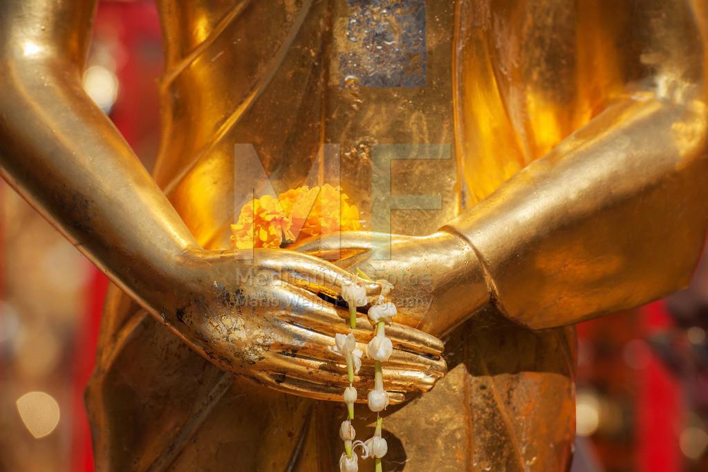 MW1212-2041 | Buddhas Hände