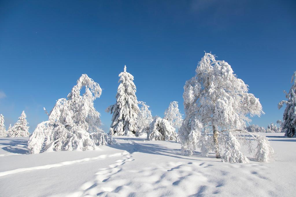 JT-170116-117 | Winter auf dem Kahlen Asten, Sauerland, höchster Berg in NRW, tief verschneite Landschaft