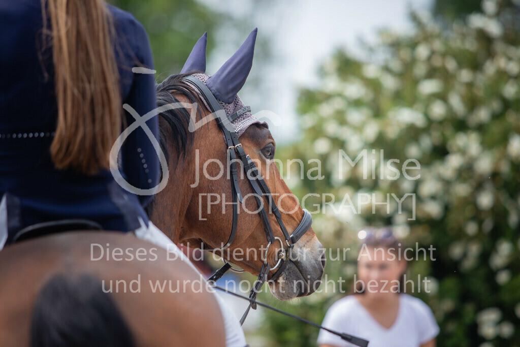 190524_LüPfSpTa_M-Spr_U25-349   Pferdesporttage Herford 2019 Springprüfung Kl. M* U25