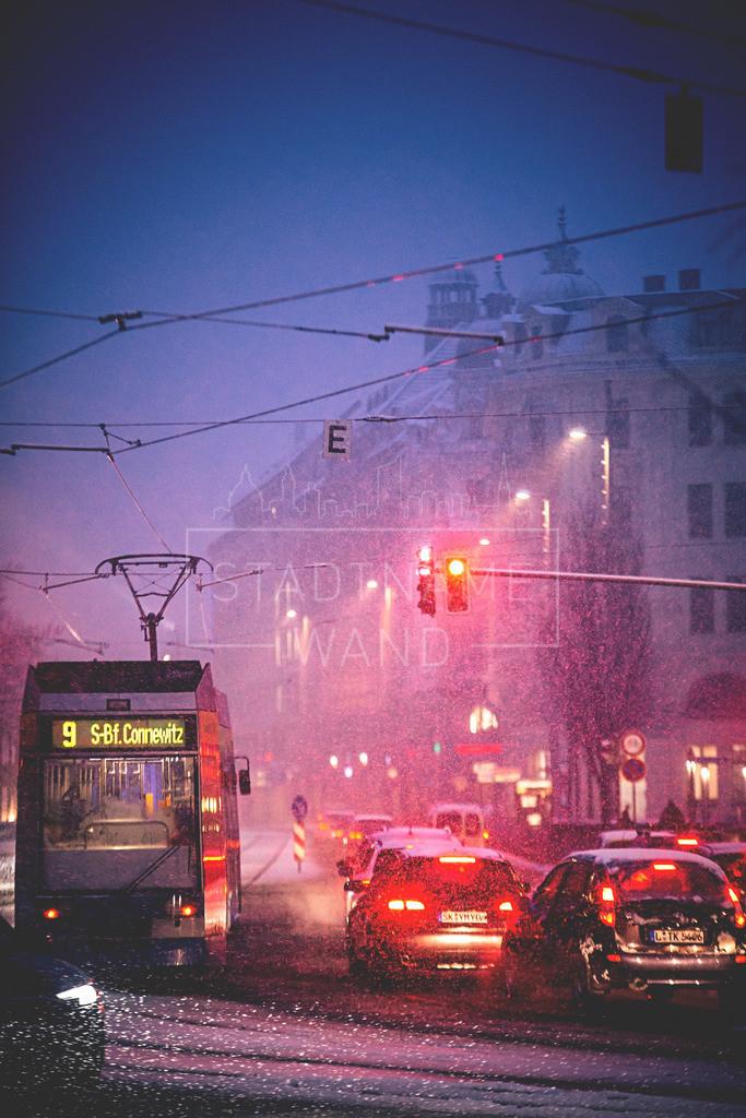 Winter Schnee Leipzig  (7)