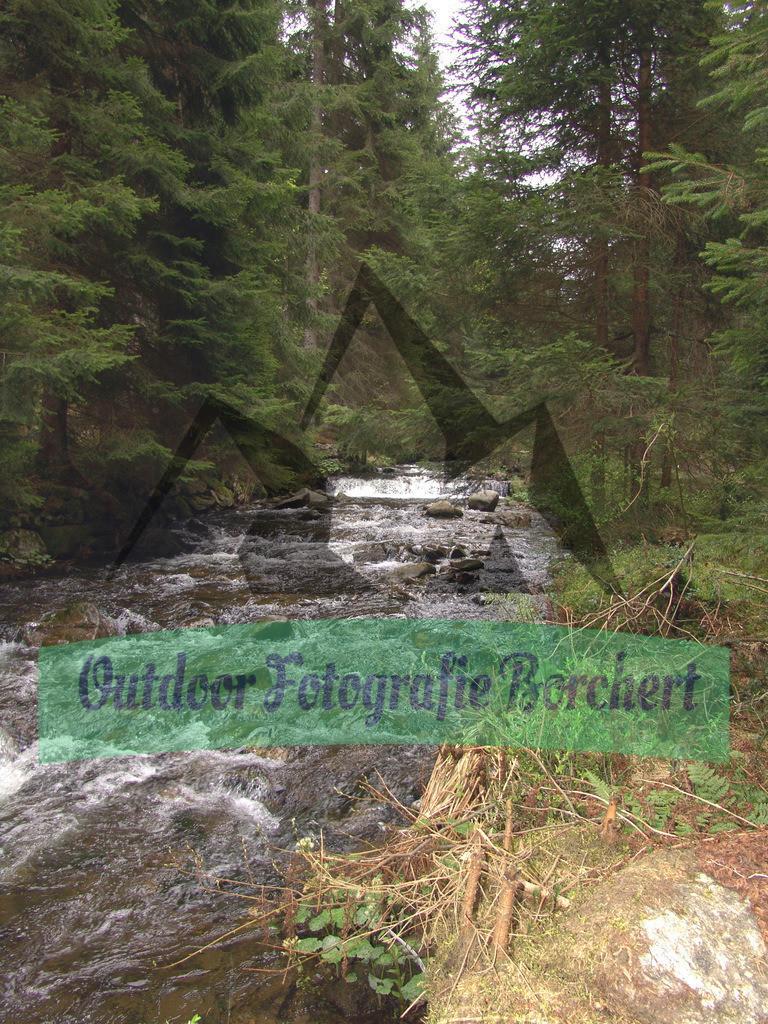 FIL4860 | Seebach, Bayerischer Wald