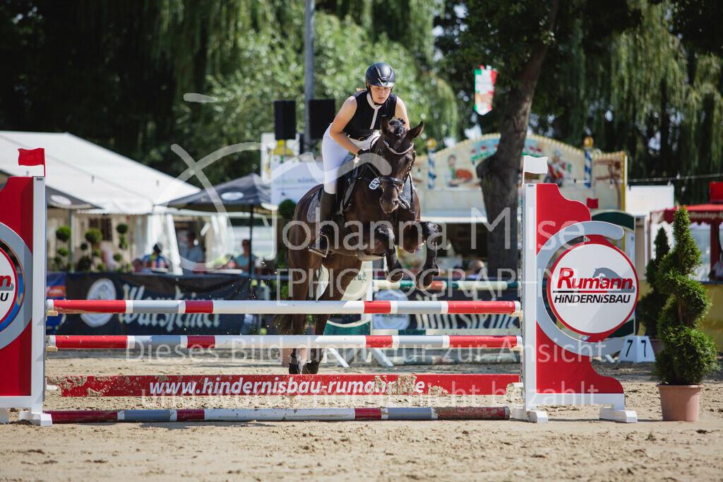 200819_Delbrück_Sprpf-A_2_1-256   Delbrück Masters 2020 Springpferdeprüfung Kl. A** 4-6jährige Pferde