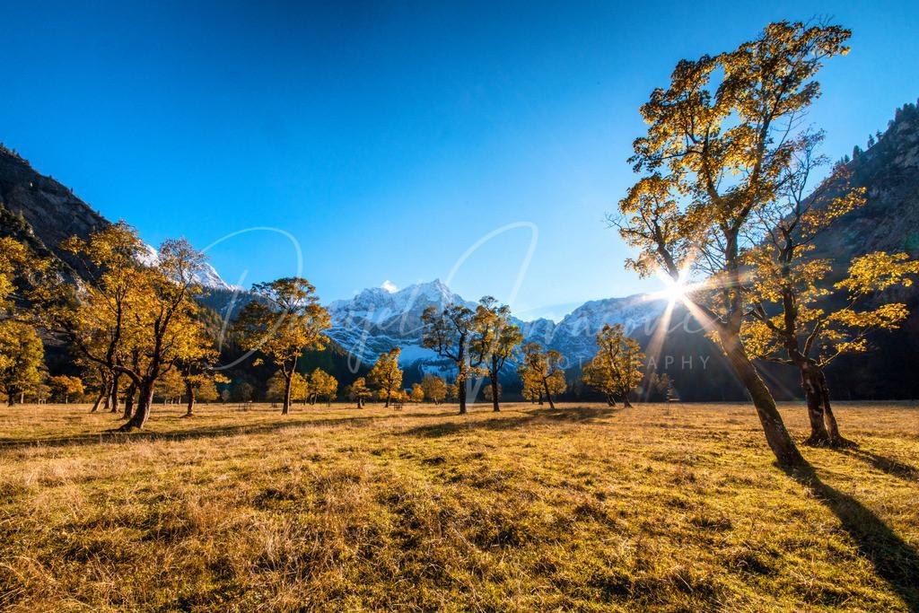 Großer Ahornboden   Herbst am Großen Ahornboden im Karwendel