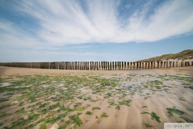 Strand bei Nieuw Haamstede | Ebbe am Strand von Nieuw Haamstede