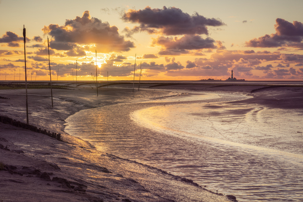 Golden  | Sonnenuntergang am Tümlauer Koog