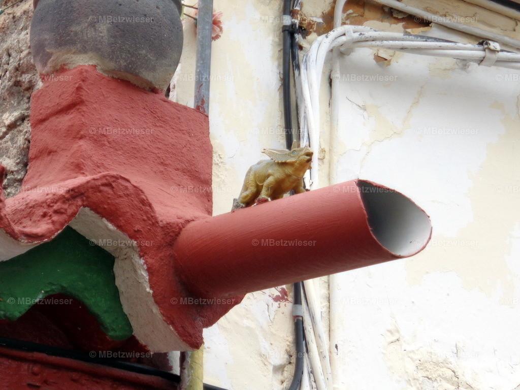 DSC01096 | Wächter auf Dachrinne in Tazacorte