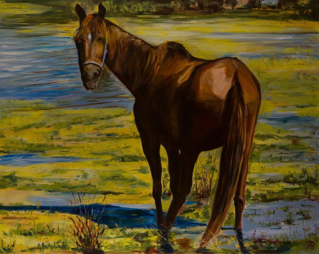 Pferd | Originalformat: 00x00 - Produktionsjahr: 2019