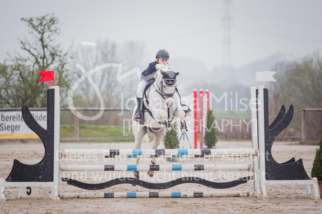 190406_Frühlingsfest_StilE-040 | Frühlingsfest der Pferde 2019, von Lützow Herford, Stil-WB mit erlaubter Zeit