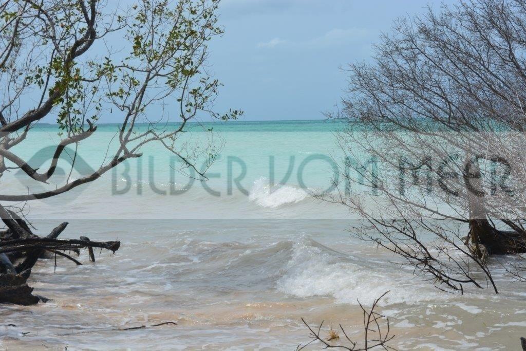 Wo Erde und Meer sich berühren | Bilder vom Meer aus Kuba