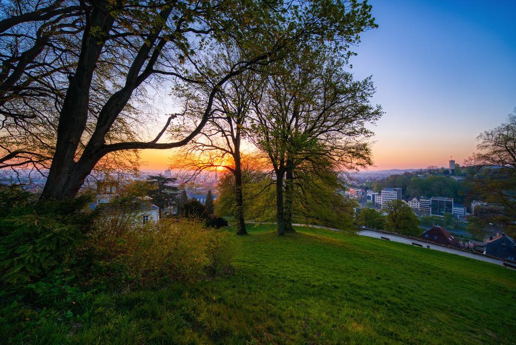 Sonnenaufgang auf dem Johannisberg   Sonnenaufgang über dem Johannisberg in Bielefeld.