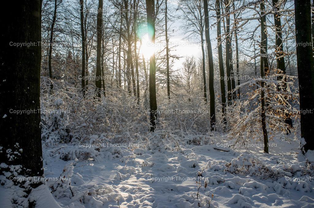 Lautertal_Schnee | Lautertal, Winterimpression, schnee, Zwischen Schmal Beerbach und Neutsch,, Bild: Thomas Neu