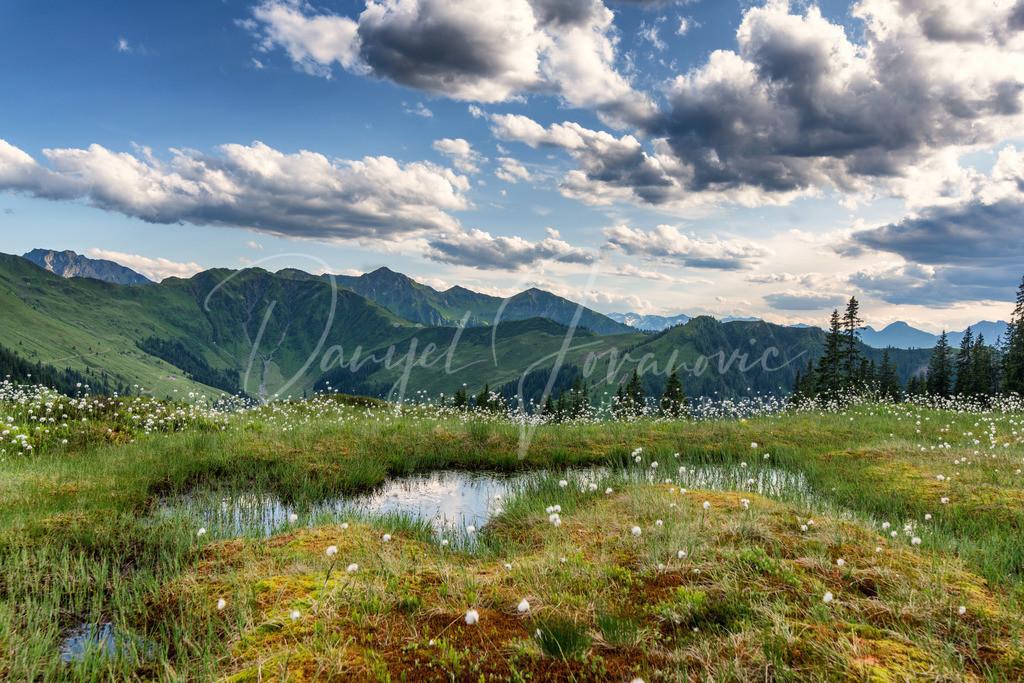 Kitzbüheler Alpen | Abendstimmung in den Kitzbüheler Alpen