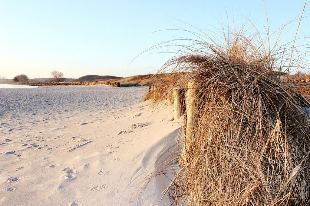 Strand in Damp | Strand in Damp im Winter