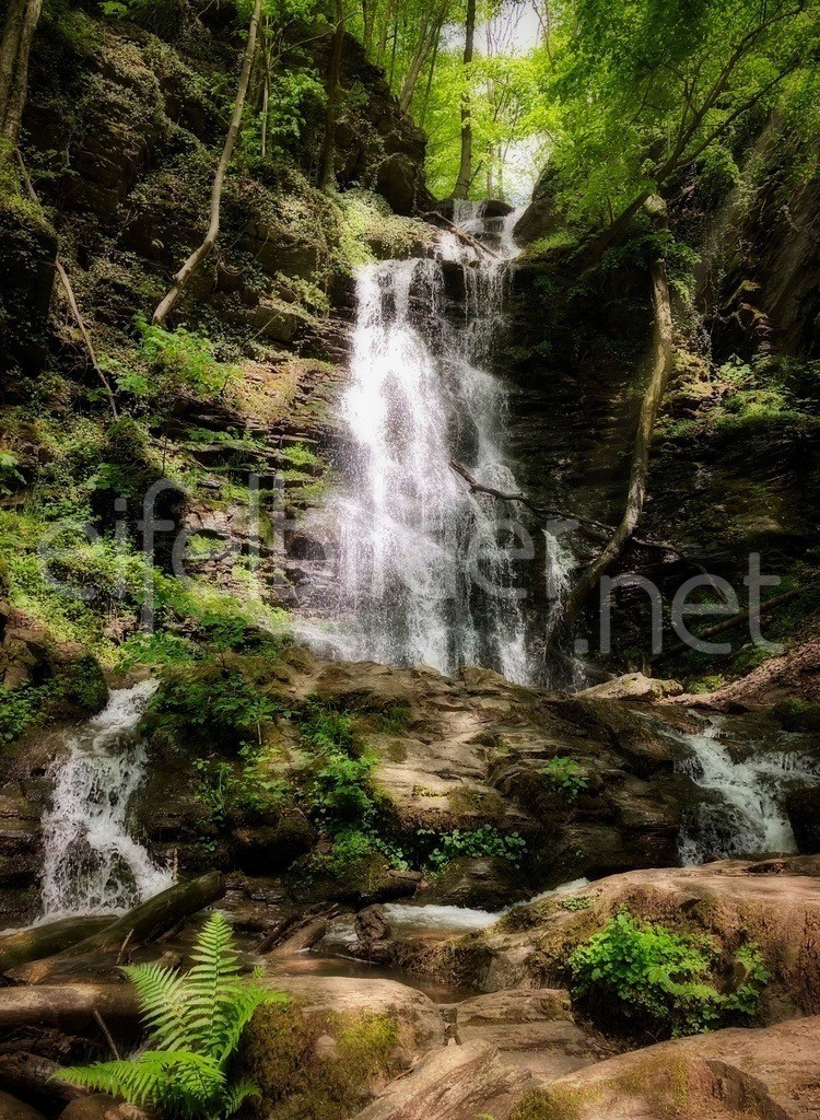 romantischer Wasserfall im Wald | zauberhafter Eifelwald