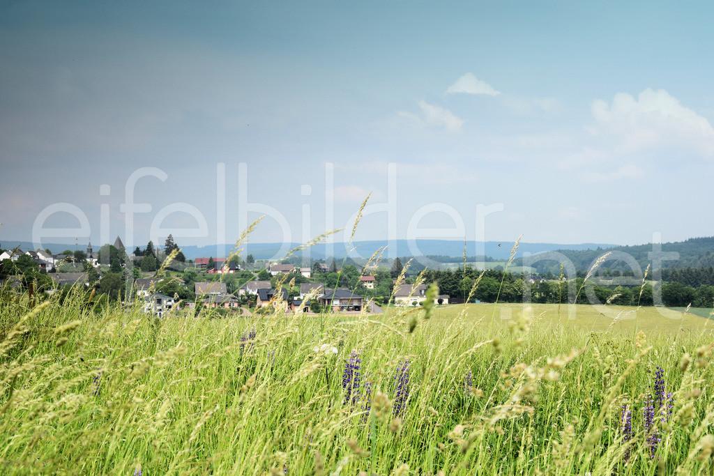 Bleckhausen | Eifel, Vulkaneifel