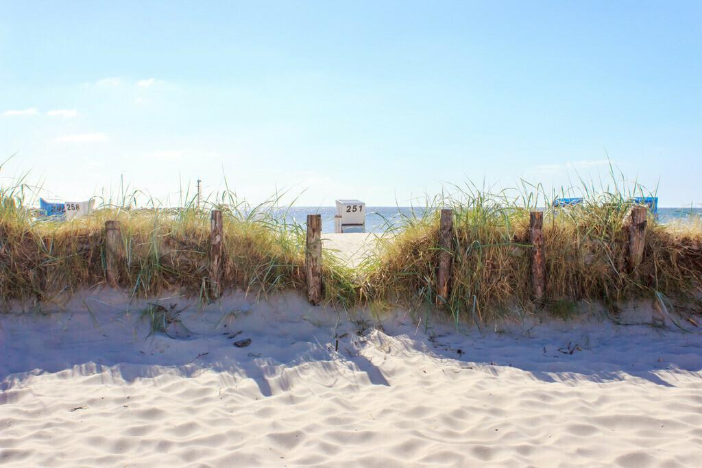 Strand in Damp | Strandkorb am Strand in Damp