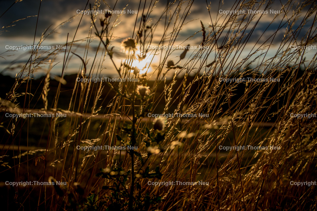 Herbstlich   Lindenfels, Kolmbach, die letzten Sonnenstrahlen des Tages Abendsonne die bereits herbstliches Licht zaubert, fotografiert in Kolmbach,, Bild: Thomas Neu
