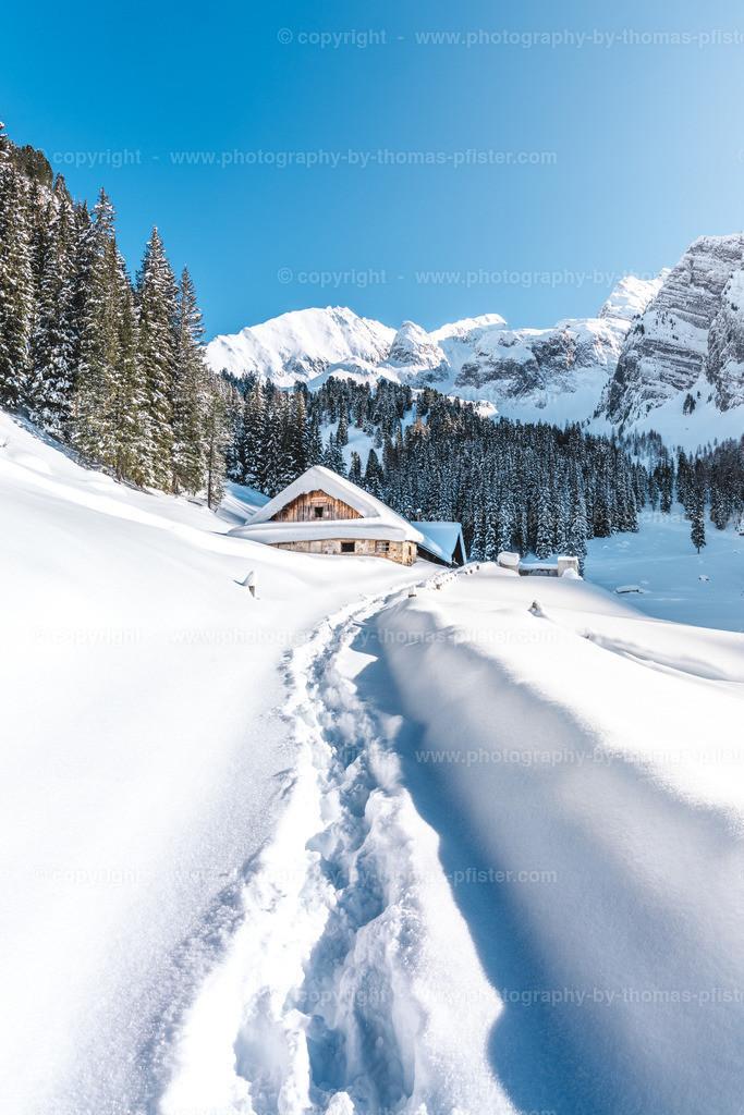 Loschboden Winter-2